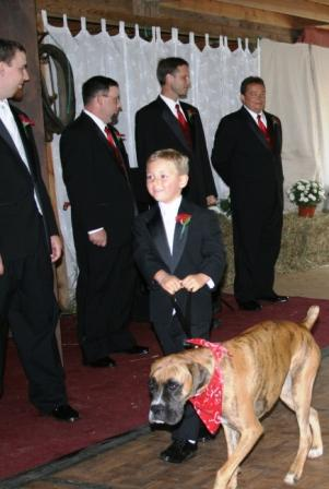 Lola, Best Dog, escorted by Christian at an Allegra Farm wedding in East Haddam, CT