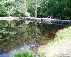 Chatfield Hollow State Park is a great spot for a water-side wedding by the pond and waterwheel.
