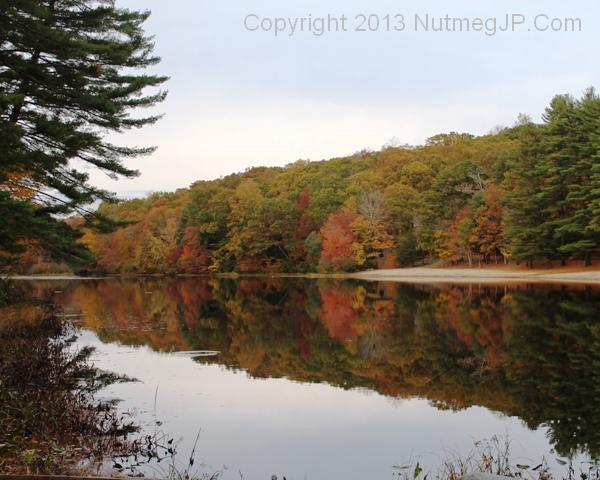 Chatfield Hollow State Park in the fall.