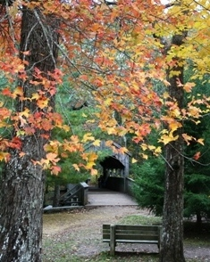 The covered bridge is great for a fall wedding in Devil's Hopyard.