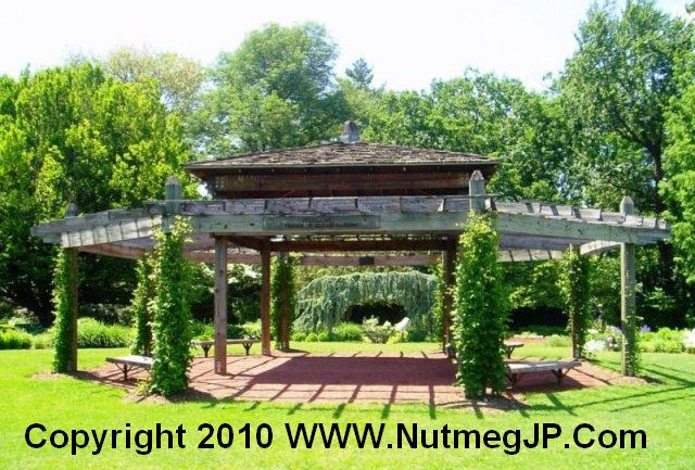 The wedding pergola in Elizabeth Park Perennial Garden is another fine place for Hartford weddings.