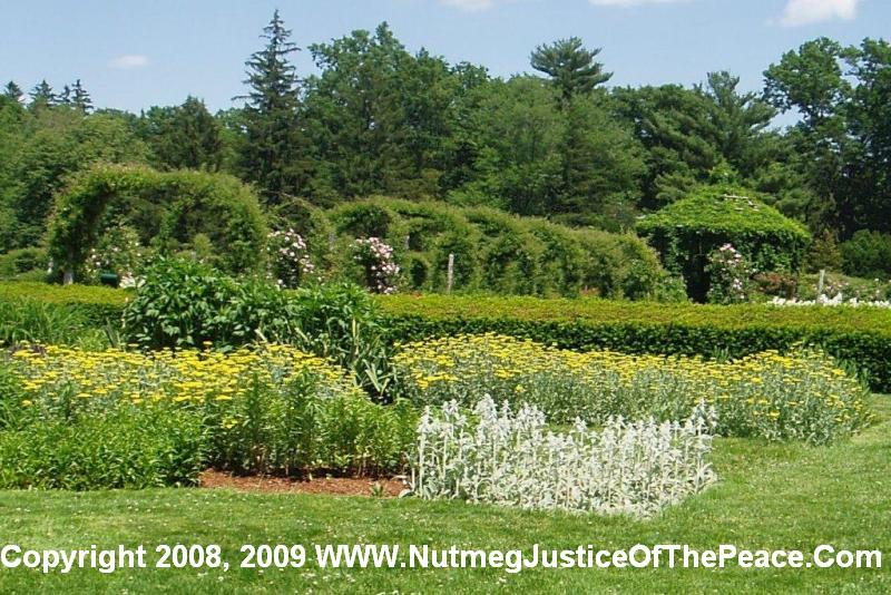 Looking from the Elizabeth Park Perennial Garden toward the Elizabeth Park Rose Garden