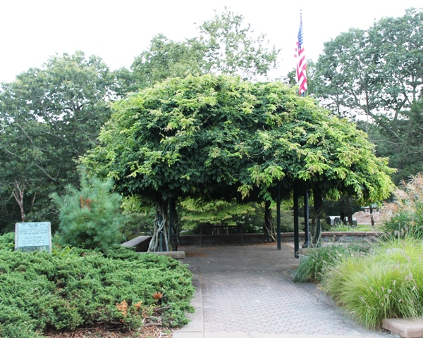 The Mohegan Park pergola provides a cool wedding space for you and your guests.