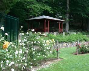 The gazebo in Mohegan Park Rose Garden