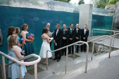 Saying 'I Do!' at a Mystic Aquarium wedding in Mystic, CT.