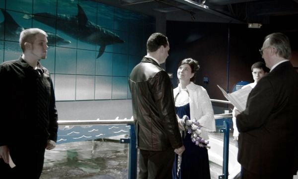 Indoor weddings at the Mystic Aquarium can take place on the Mezzanine.